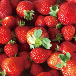 真庭の苺を使ったフレッシュジュース